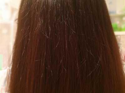 二月初二龙昂首理发 二月二龙昂首为什么要理发