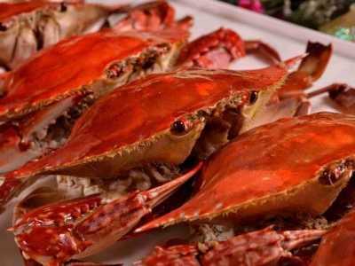 孕婦梭子蟹 梭子蟹不能和什么一起吃