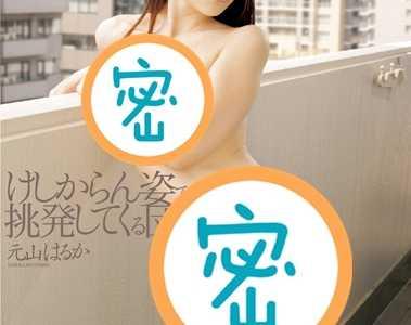 元山晴香番號iene-283在線播放