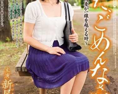 新尾雾子(新尾きり子)番号juc-252在线观看